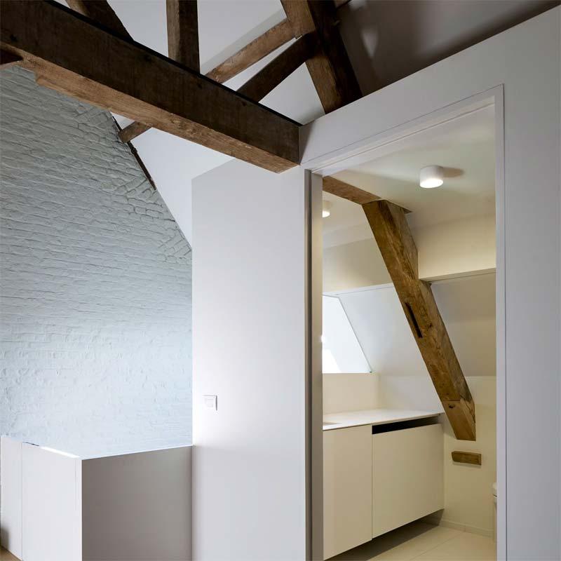 delta light diro plafondlamp