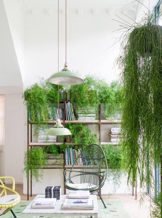Een huis met planten als detail