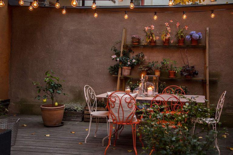 Een mooie herfst tuin!