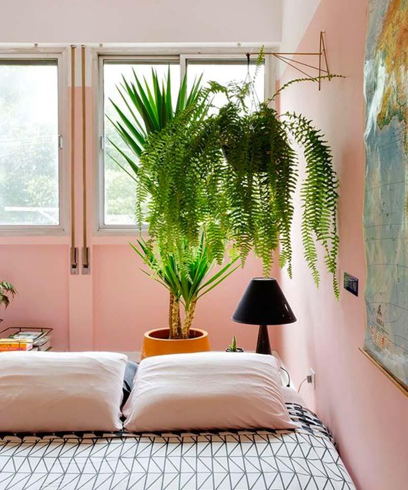 In deze kleine slaapkamer met roze muren zijn planten op de vloer afgewisseld met hangplanten!