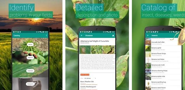 planten herkennen apps agrobasis