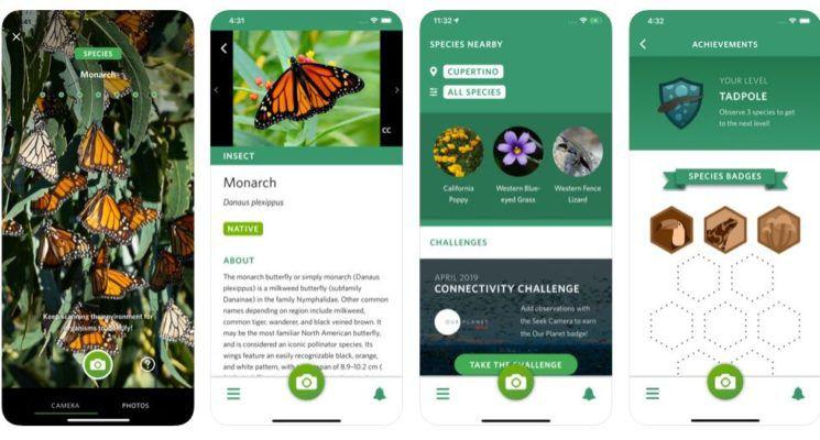 planten herkennen apps inaturalist
