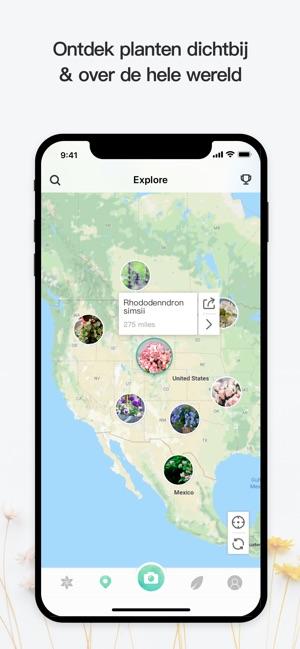 planten herkennen apps picturethis