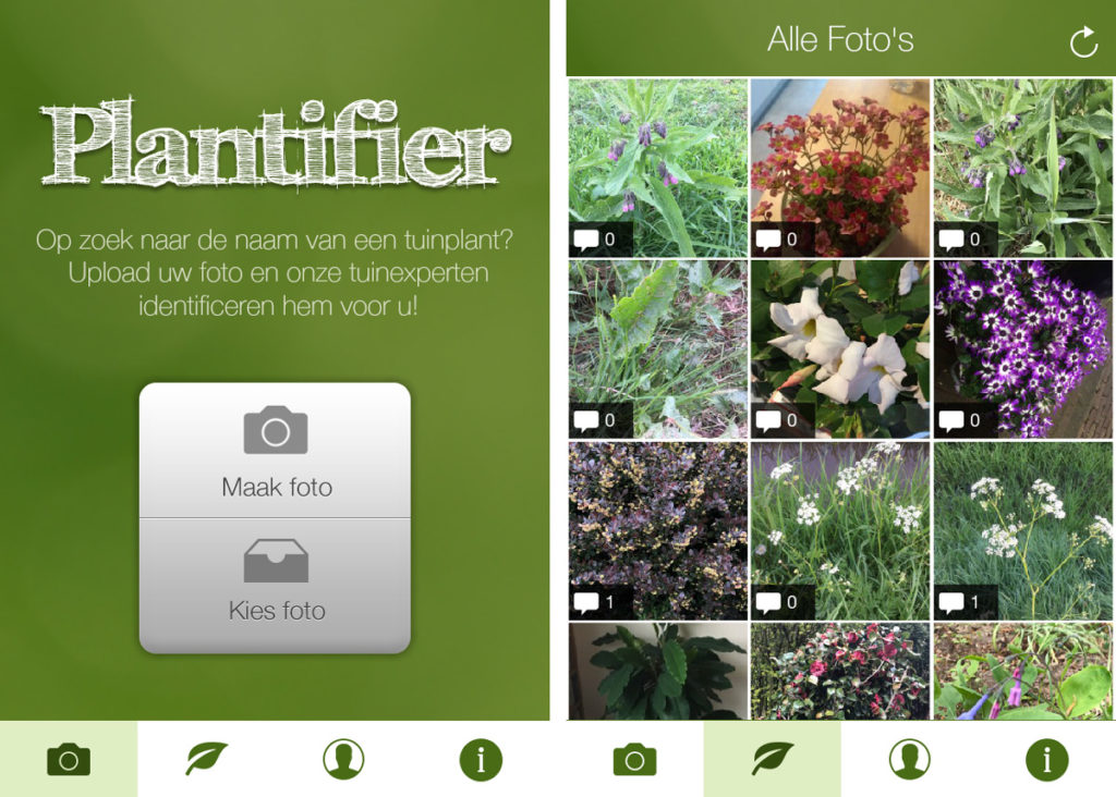 planten herkennen apps plantifier