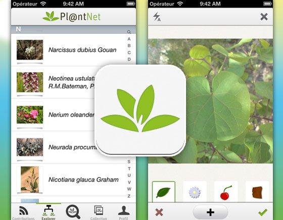 planten herkennen apps plantnet