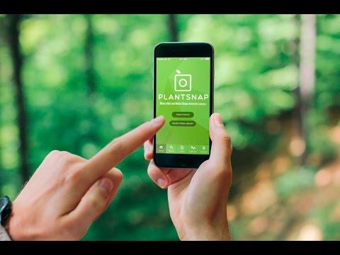 planten herkennen apps plantsnap