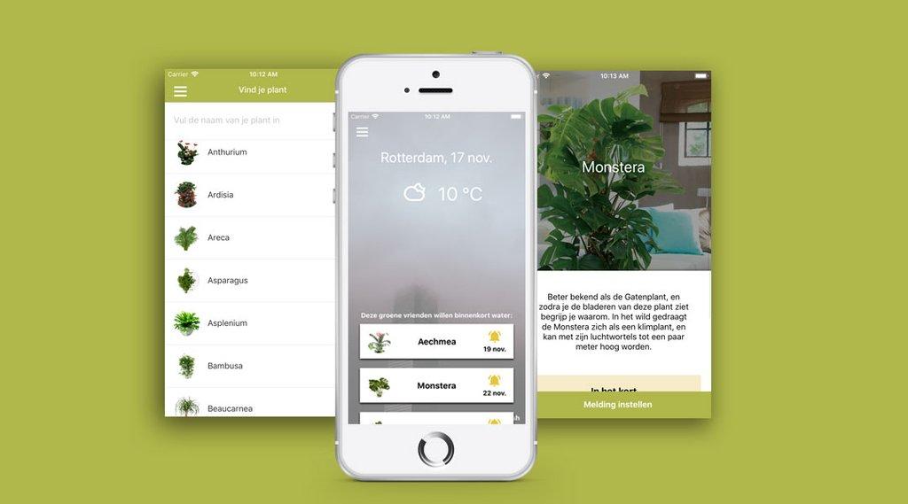 planten herkennen apps plantsome