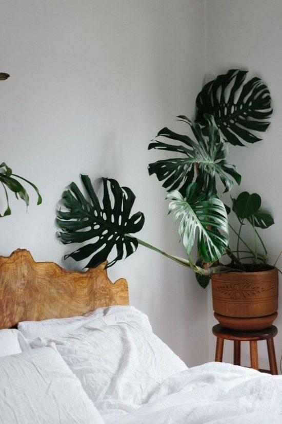 http://www.wooninspiratie.nu/wp-content/uploads/planten-in-de-slaapkamer-2-1-550x825.jpg