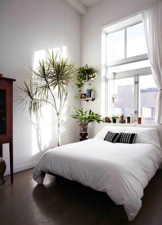 Planten in de slaapkamer