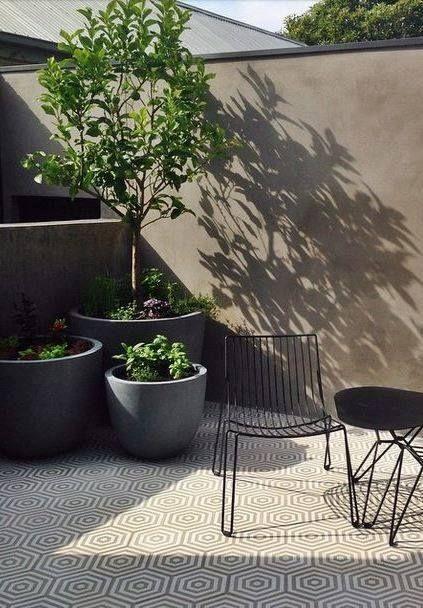 Planten in de tuin