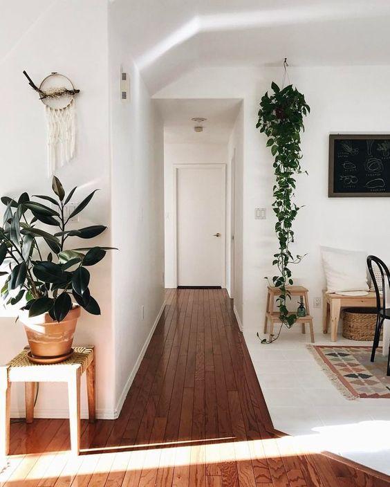 Planten ophangen: inspiratie & ideeën!