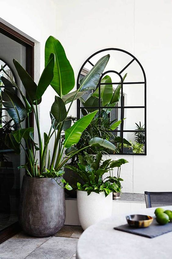 Plantenpotten in de tuin