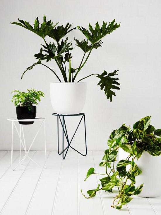 Plantenstandaard Wooninspiratie