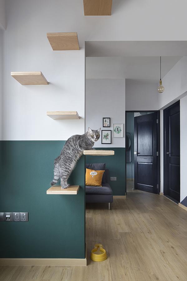 Super leuk en kat/poes vriendelijk appartement!