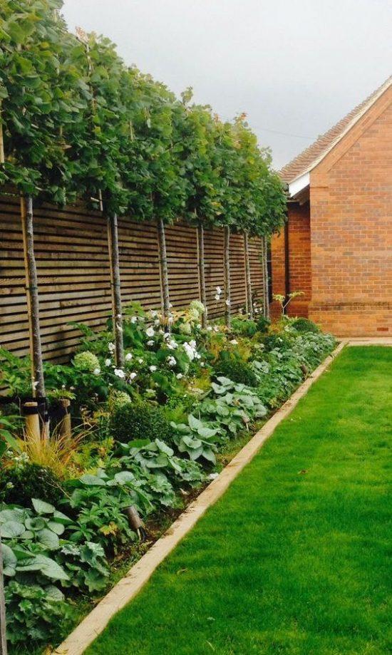 tuin-indeling-planten-border