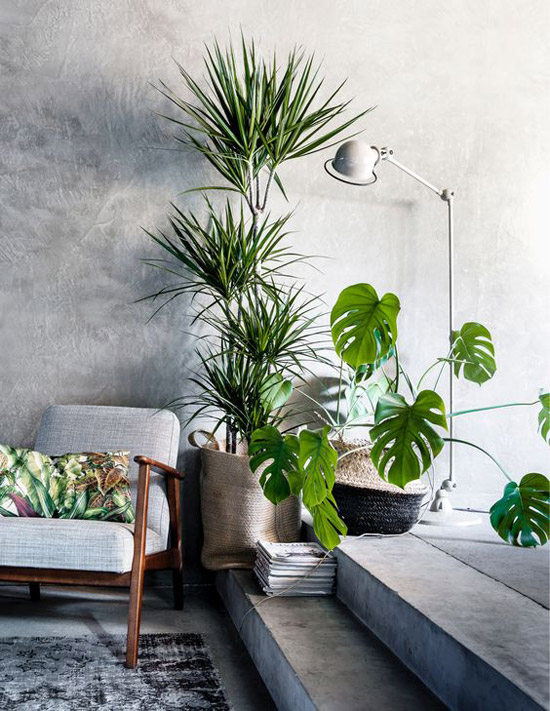 urban jungle interieur wooninspiratie