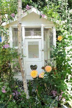 Vogels houden in de tuin