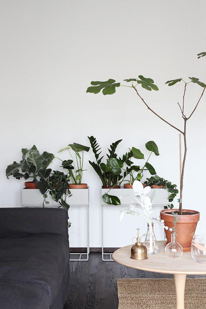 woonkamer inspiratie plantenbak op verhoging