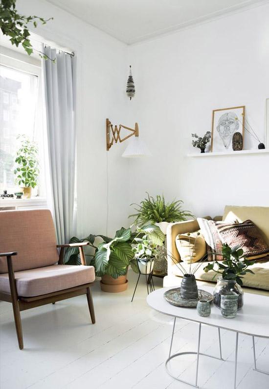Woonkamer met planten als decoratie wooninspiratie - Woonkamer decoratie photo ...