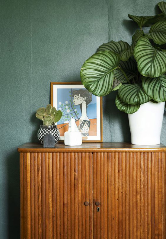 Woonkamer Inrichten Planten Hangplant: Planten woonkamer die je in ...